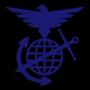 vys_logo